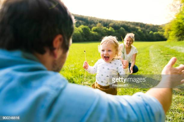 Cute little boy on meadow with parents running towards father
