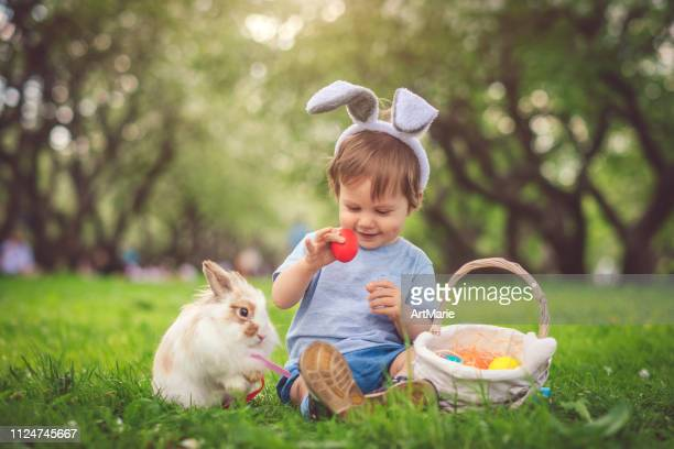 cute little boy playing with bunny and easter eggs - easter basket stock pictures, royalty-free photos & images
