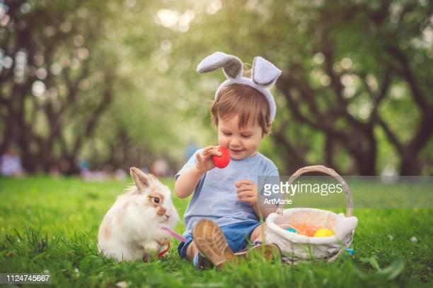 rapaz pequeno bonito que joga com coelho e ovos de easter - easter - fotografias e filmes do acervo