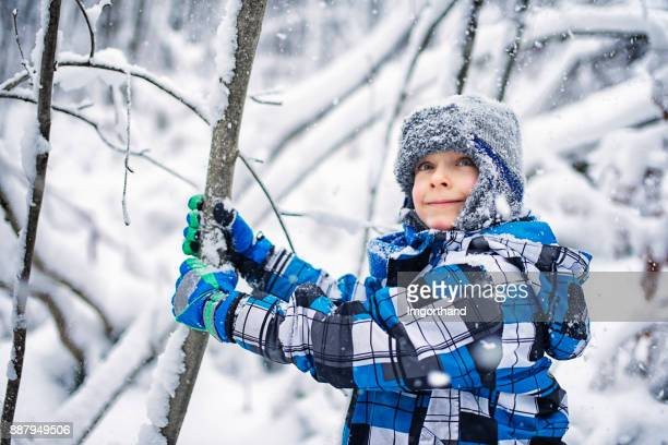 Cute little boy shaking snow and frost off tree in winter forest