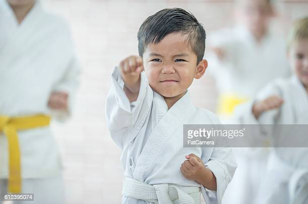 Cute Little Boy Taking Karate