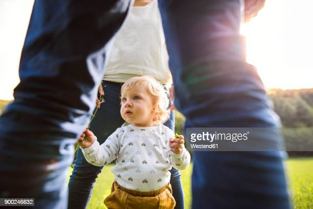 cute little boy with parents on meadow - femme entre deux hommes photos et images de collection