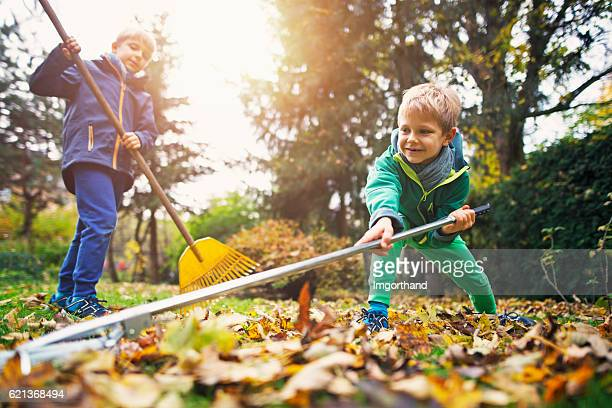 Cute little boys raking autumn leaves