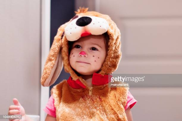 cute little child dressed in dog halloween costumes - halloween kids stock photos and pictures
