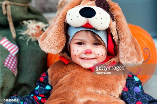 cute little child dressed in dog halloween costumes - sugar baby imagens e fotografias de stock