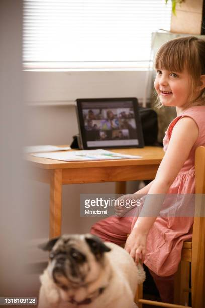 cute little girl and her furry friend attending an online preschool class - mmeemil stock pictures, royalty-free photos & images