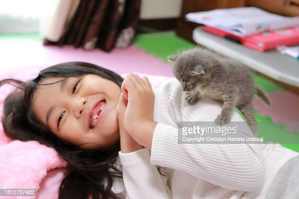cute little girl and her lovely cat pet - saitama prefecture stock pictures, royalty-free photos & images