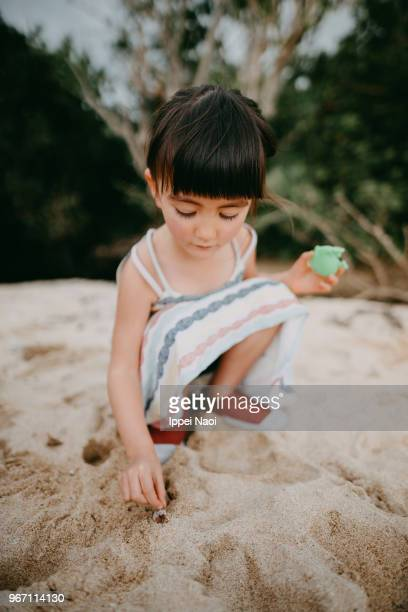 Cute little girl catching hermit crab on beach