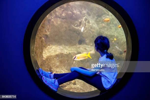 Niedliche kleine Mädchen Unterwasser Leben in einem großen Aquarium zu betrachten