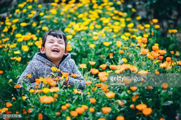 cute little smiling boy surrounded by flowers - click&boo fotografías e imágenes de stock