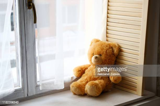 a cute little teddy bear toy sits on a brown wooden and white plastic windowsill with a copy of the text space on the window glass. beautiful lonely bear on the window. the concept of childhood. - teddy bear stock pictures, royalty-free photos & images