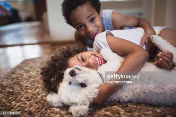 irmãos bonitos da misturado-raça que jogam em casa com cão - animal doméstico - fotografias e filmes do acervo