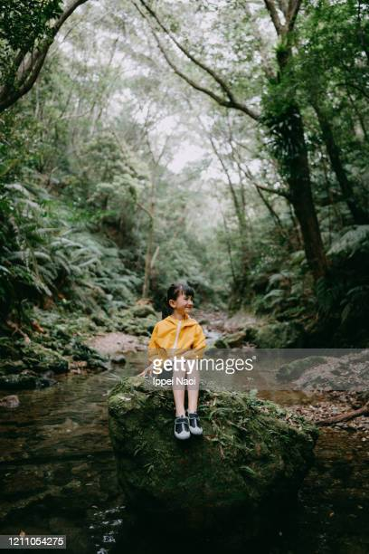cute preschool girl smiling in forest, okinawa, japan - reality fernsehen stock pictures, royalty-free photos & images