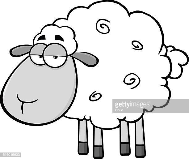 Cute Sheep In Gray Color