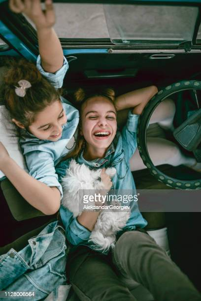 cute sisters with their cute pet in the vintage car - dog eats out girl stock pictures, royalty-free photos & images