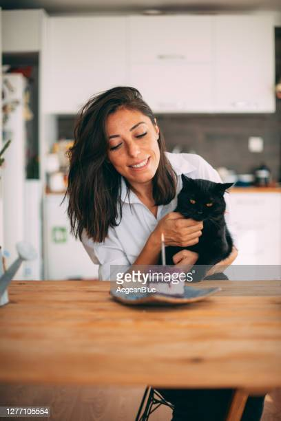 cute woman celebrating her birthday with her black cat - happy birthday cat stock pictures, royalty-free photos & images