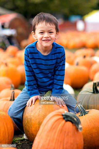 Cute young boy sitting on a pumpking and smiling
