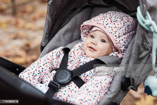 cuteness overload - pushchair stock pictures, royalty-free photos & images