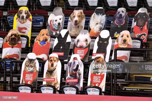Cutouts of pets are shown in the seats at an NHL game where the Calgary Flames hosted the Montreal Canadiens on March 11 at the Scotiabank Saddledome...