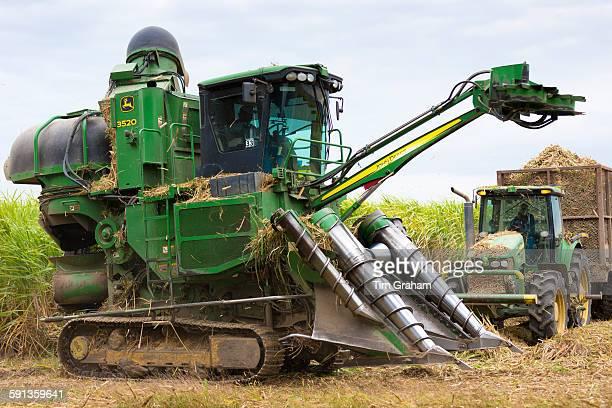 Cutting and harvesting sugarcane in the Fall at plantation along the Mississippi at Baldwin Louisiana USA
