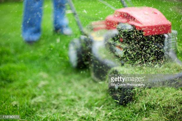 cutting grass - lawn mower stock pictures, royalty-free photos & images