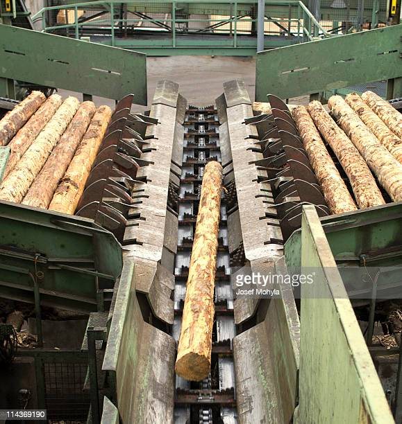 Cutting line in a saw mill showing logs