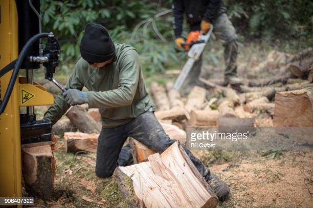 Cutting log with wood splitter and chainsaw