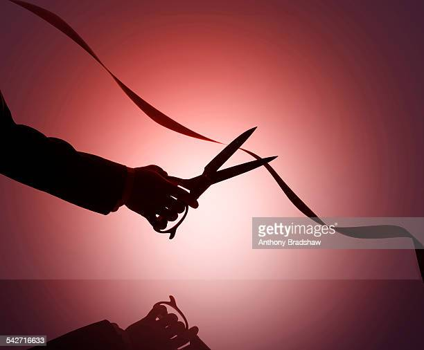 cutting red tape - bureaucracy stock pictures, royalty-free photos & images
