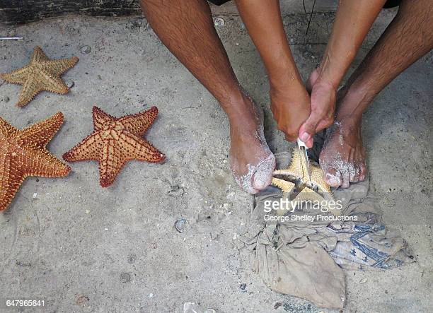 cutting star fish to sell shell - ugly mexican people stock pictures, royalty-free photos & images