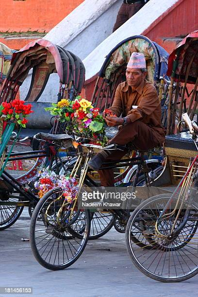 Cycle rickshaws driver putting flowers on it to decorate it. In terai region of Nepal, cycle rickshaws are still the most popular means of public...