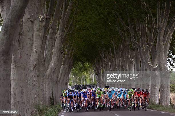 101th Tour de France / Stage 15 Illustration Illustratie / Peleton Peloton / Forrest Bois Bos / Landscape Paysage Landschap / Tallard - Nimes / Ronde...