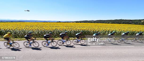 103th Tour de France 2016 / Stage 14 Illustration / Sunflowers Field / Christopher FROOME Yellow Leader Jersey / team Sky / Landscape / Montelimar...