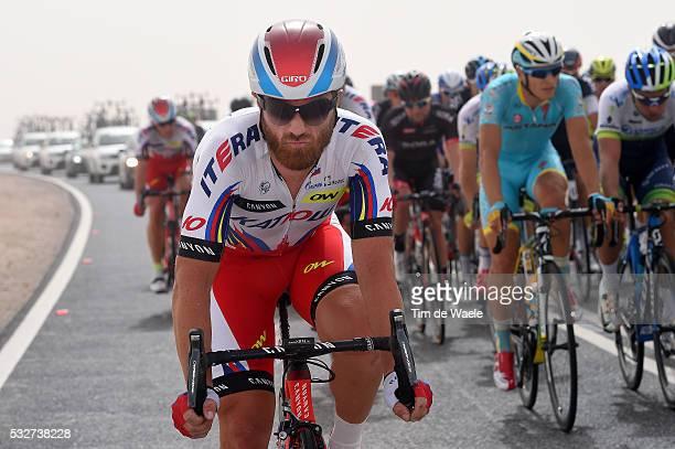 14th Tour of Qatar 2015 / Stage 2 PAOLINI Luca / Al Wakra - Al Khor Corniche / Etape Rit / Ronde/ Tim De Waele