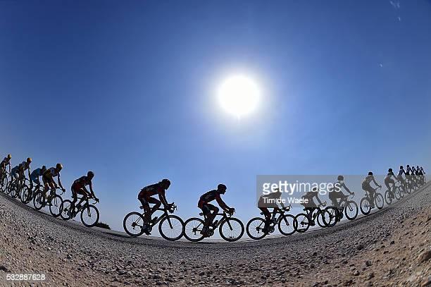 15th Tour of Qatar 2016 / Stage 4 Illustration Illustratie / Peleton Peloton / Silhouet Landscape Paysage Landschap / Al Zubarah Fort Madinat Al...