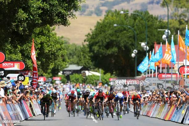 20th Santos Tour Down Under 2018 / Stage 1 Arrival / Sprint / Andre GREIPEL / Peter SAGAN / Caleb EWAN / Elia VIVIANI / Port Adelaide Lyndoch / Men /...
