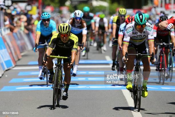 20th Santos Tour Down Under 2018 / Stage 1 Arrival / Sprint / Peter SAGAN / Caleb EWAN / Port Adelaide Lyndoch / Men / TDU /
