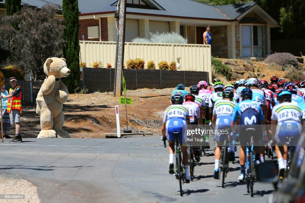 20th Santos Tour Down Under 2018 / Stage 1 Fans / Public / Port Adelaide - Lyndoch (145km) / Men / TDU /