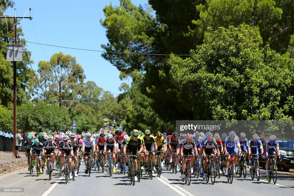 20th Santos Tour Down Under 2018 / Stage 1 Peloton / Cameron MEYER (AUS)/ Port Adelaide - Lyndoch (145km) / Men / TDU /