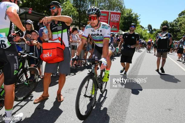 20th Santos Tour Down Under 2018 / Stage 2 Arrival / Peter SAGAN / King William Road Unley Mount Barker Road Stirling 400m / Men / TDU /