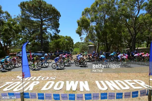 20th Santos Tour Down Under 2018 / Stage 2 Peloton / Landscape / King William Road Unley Mount Barker Road Stirling 400m / Men / TDU /