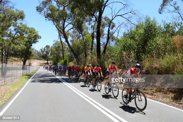 20th Santos Tour Down Under 2018 / Stage 2 Peloton / Thomas DE GENDT / Marcel SIEBERG / King William Road Unley Mount Barker Road Stirling 400m / Men...