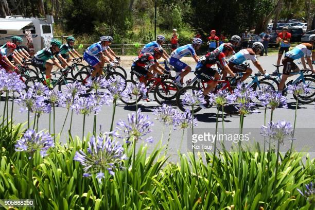 20th Santos Tour Down Under 2018 / Stage 2 Richie PORTE / King William Road Unley Mount Barker Road Stirling 400m / Men / TDU /