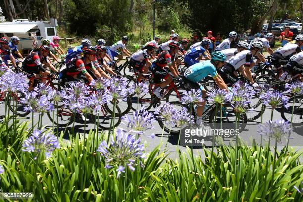 20th Santos Tour Down Under 2018 / Stage 2 Simon GERRANS / King William Road Unley Mount Barker Road Stirling 400m / Men / TDU /