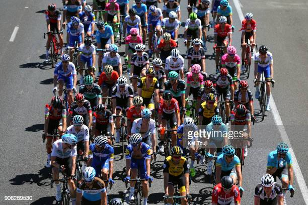 20th Santos Tour Down Under 2018 / Stage 3 Peloton / Colley Tce Glenelg The Esplanade Victor Harbor / Race shortened due to high temperatures / Men /...