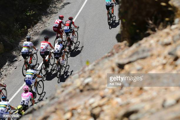 20th Santos Tour Down Under 2018 / Stage 4 Peloton / Peter SAGAN / Nathan HAAS / The Parade Norwood Greenhill Road Uraidla / Men / TDU /