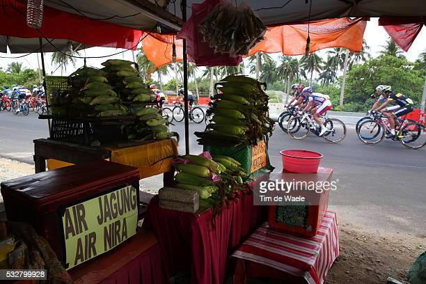 20th Tour Langkawi 2015/ Stage 5 Illustration Illustratie/ Peloton Peleton/ Landscape Paysage/ Food/ Kuala Terengganu Kuantan / Ronde etape rit/...