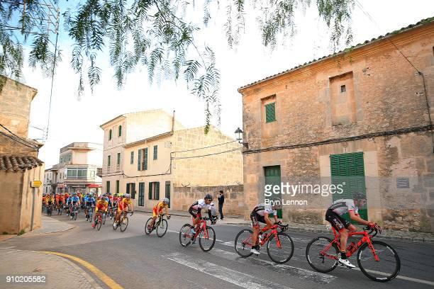 27th Playa de Palma Mallorca Challenge / Trofeo Campos Alvaro ROBREDO / Team BurgosBH / Peloton / Landscape / City / Porreres Ses Salines / Mallorca...