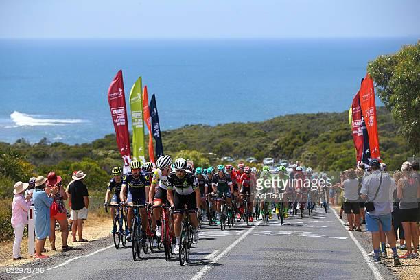 3rd Cadel Evans Great Ocean Road Race 2017 / Men Peloton / Mark RENSHAW / Miles SCOTSON / Geelong Waterfront Geelong Waterfront / Men / Great Ocean...