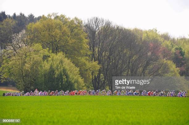 44E Amstel Gold Race 2009Illustration Illustratie Peleton Peloton Forest Bois Bos Landscape Paysage Silhouet Shadow Landschap Tim De Waele