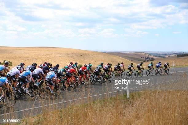 4th Cadel Evans Great Ocean Road Race 2018 / Men Peloton / Landscape / Geelong Waterfront Geelong Waterfront / Great Ocean Road Race /